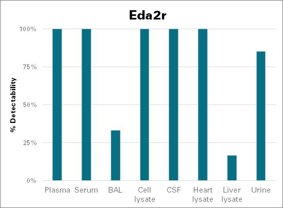 Tumor necrosis factor receptor superfamily member 27 - mouse (Eda2r)