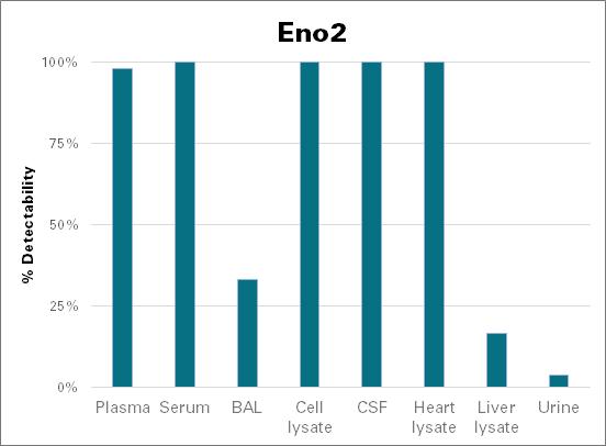 Gamma-enolase - mouse (Eno2)
