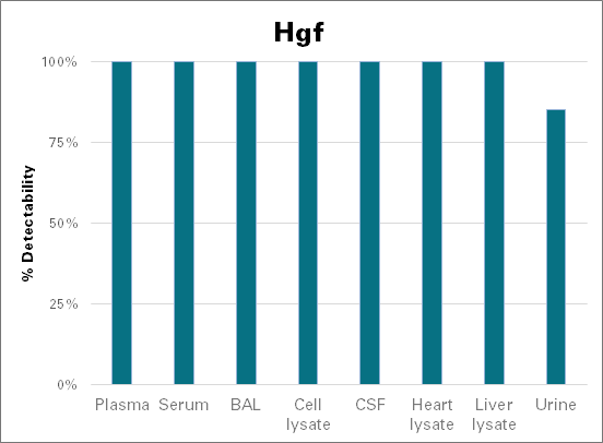 Hepatocyte growth factor - mouse (Hgf)