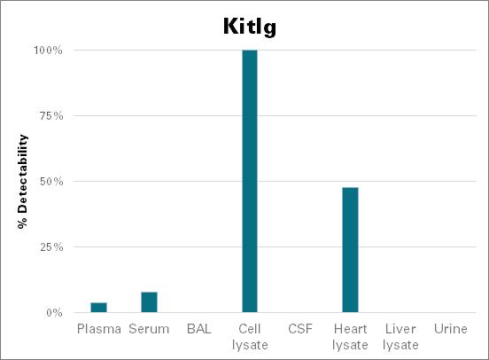 Kit ligand - mouse (Kitlg)