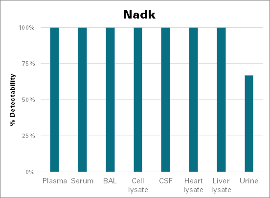 NAD kinase - mouse (Nadk)