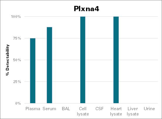 Plexin-A4 - mouse (Plxna4)