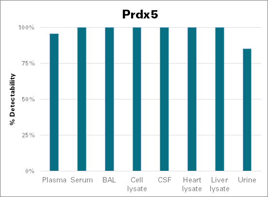 Peroxiredoxin-5, mitochondrial - mouse (Prdx5)