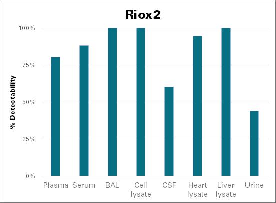 Ribosomal oxygenase 2 - mouse (Riox2)