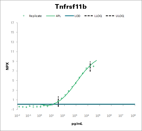 Tumor necrosis factor receptor superfamily member 11B - mouse (Tnfrsf11b)