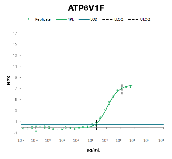 V-type proton ATPase subunit F (ATP6V1F)