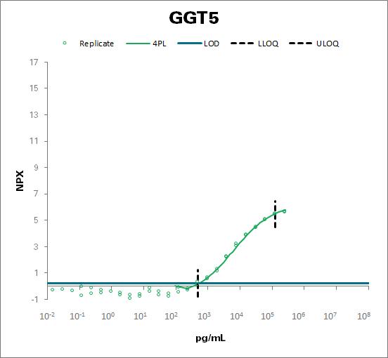 Glutathione hydrolase 5 proenzyme (GGT5)