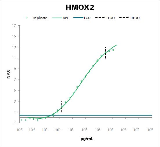 Heme oxygenase 2 (HMOX2)