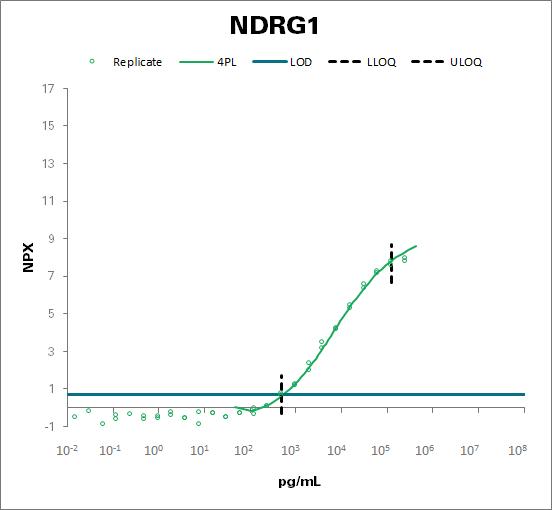 Protein NDRG1 (NDRG1)