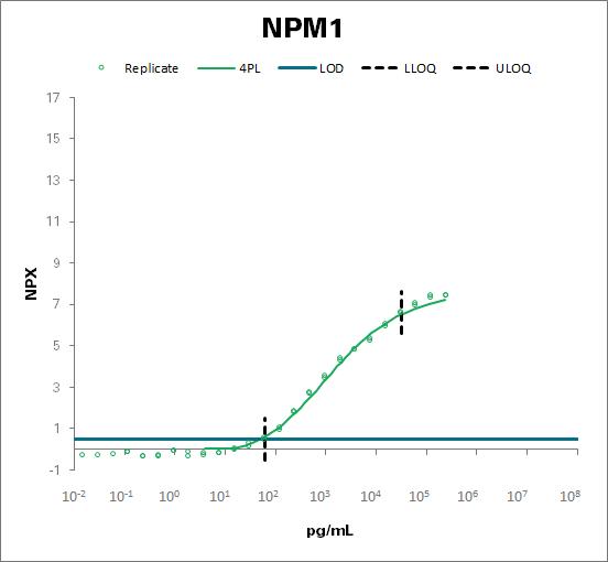 Nucleophosmin (NPM1)