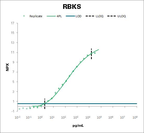 Ribokinase (RBKS)