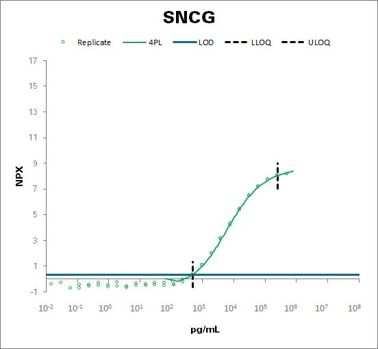 Gamma-synuclein (SNCG)