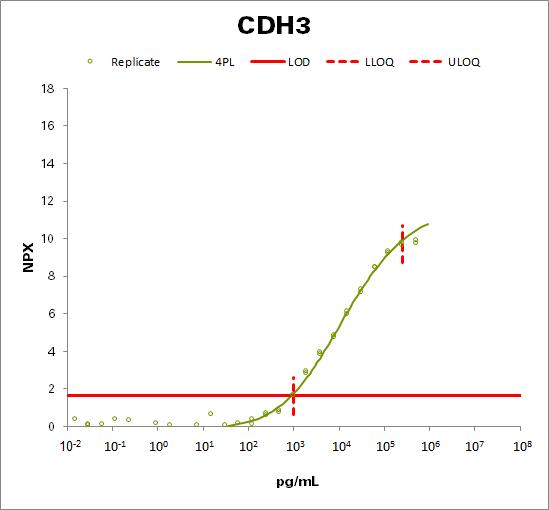 Cadherin-3 (CDH3)