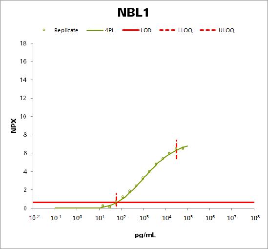 Neuroblastoma suppressor of tumorigenicity 1 (NBL1)