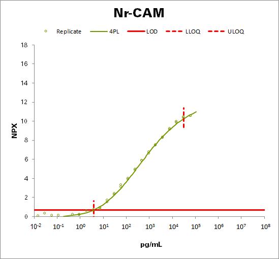 Neuronal cell adhesion molecule (Nr-CAM)