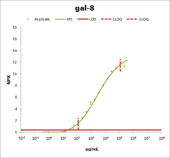 Galectin-8 (gal-8)