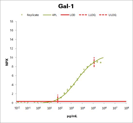 Galectin-1 (Gal-1)