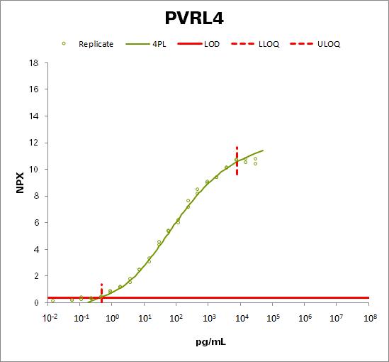 Nectin-4 (PVRL4)