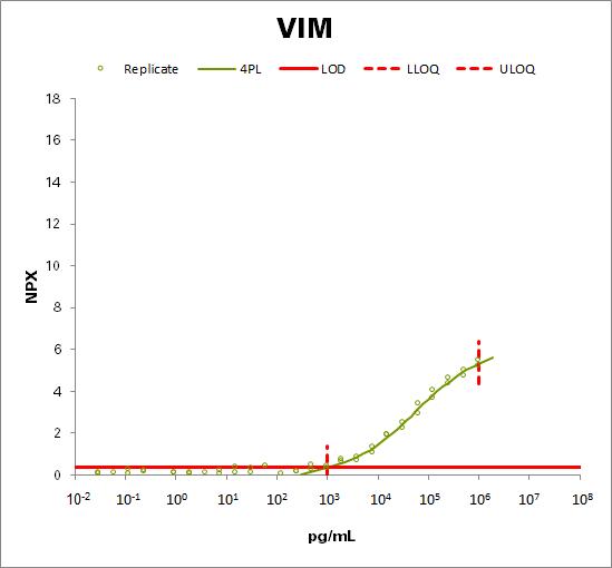 Vimentin (VIM)