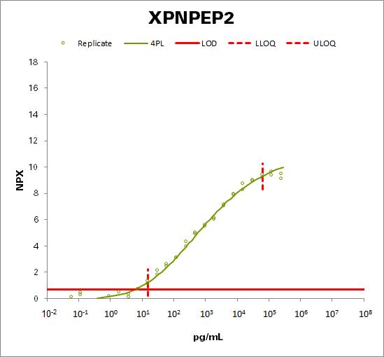 Xaa-Pro aminopeptidase 2 (XPNPEP2)