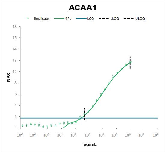 peroxisomal 3-ketoacyl-CoA thiolase (ACAA1)