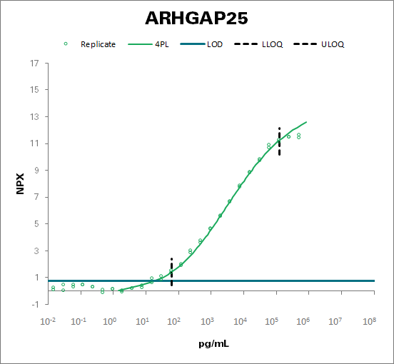 Rho GTPase-activating protein 25 (ARHGAP25)