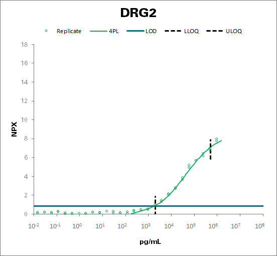Developmentally-regulated GTP-binding protein 2 (DRG2)