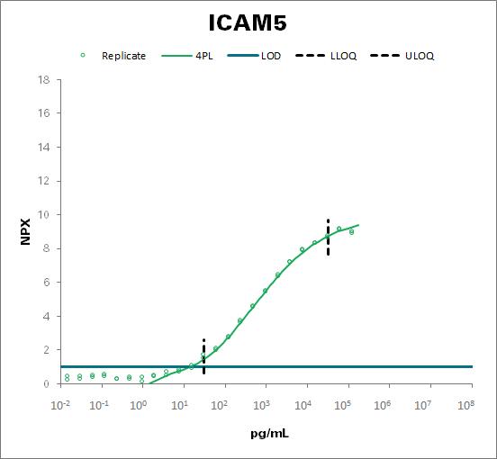Intercellular adhesion molecule 5 (ICAM5)