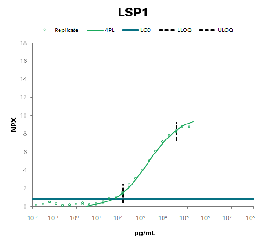 Lymphocyte-specific protein 1 (LSP1)