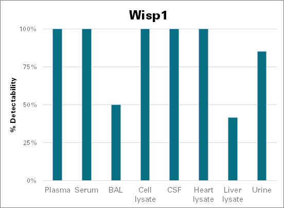 WNT1-inducible-signaling pathway protein 1 - mouse (Wisp1)